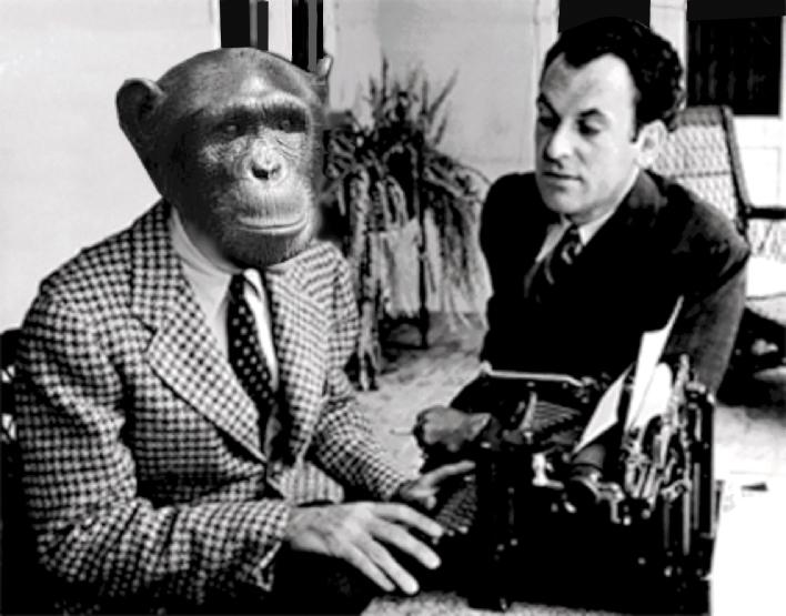 scimmia scrittrice