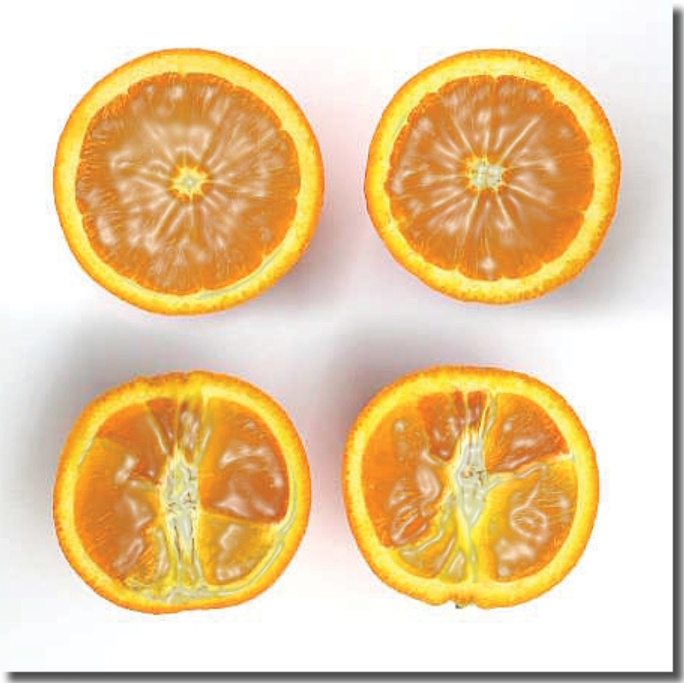 arancia con ombra